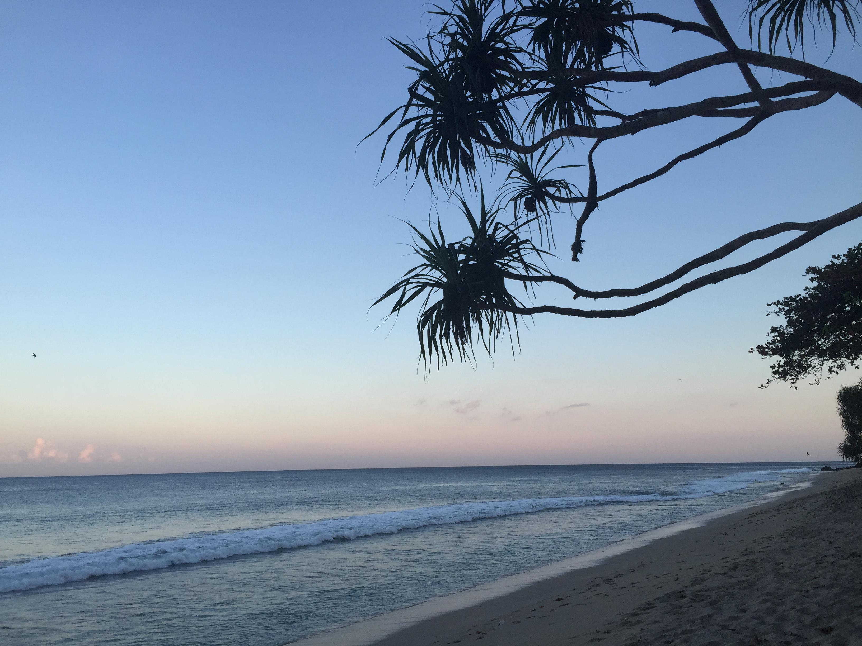 Champagne Twilight - Lombok Sunrise