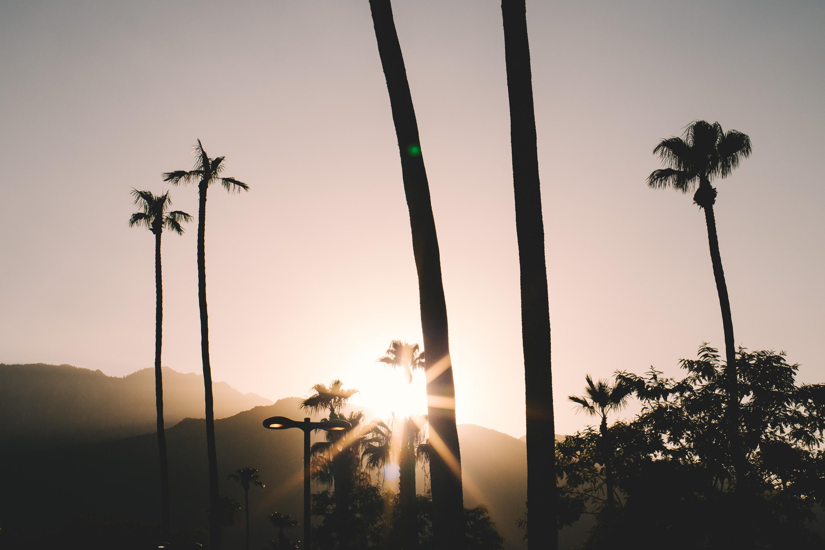 Champagne Twilight Korakia Pensione - Parker Palm Springs