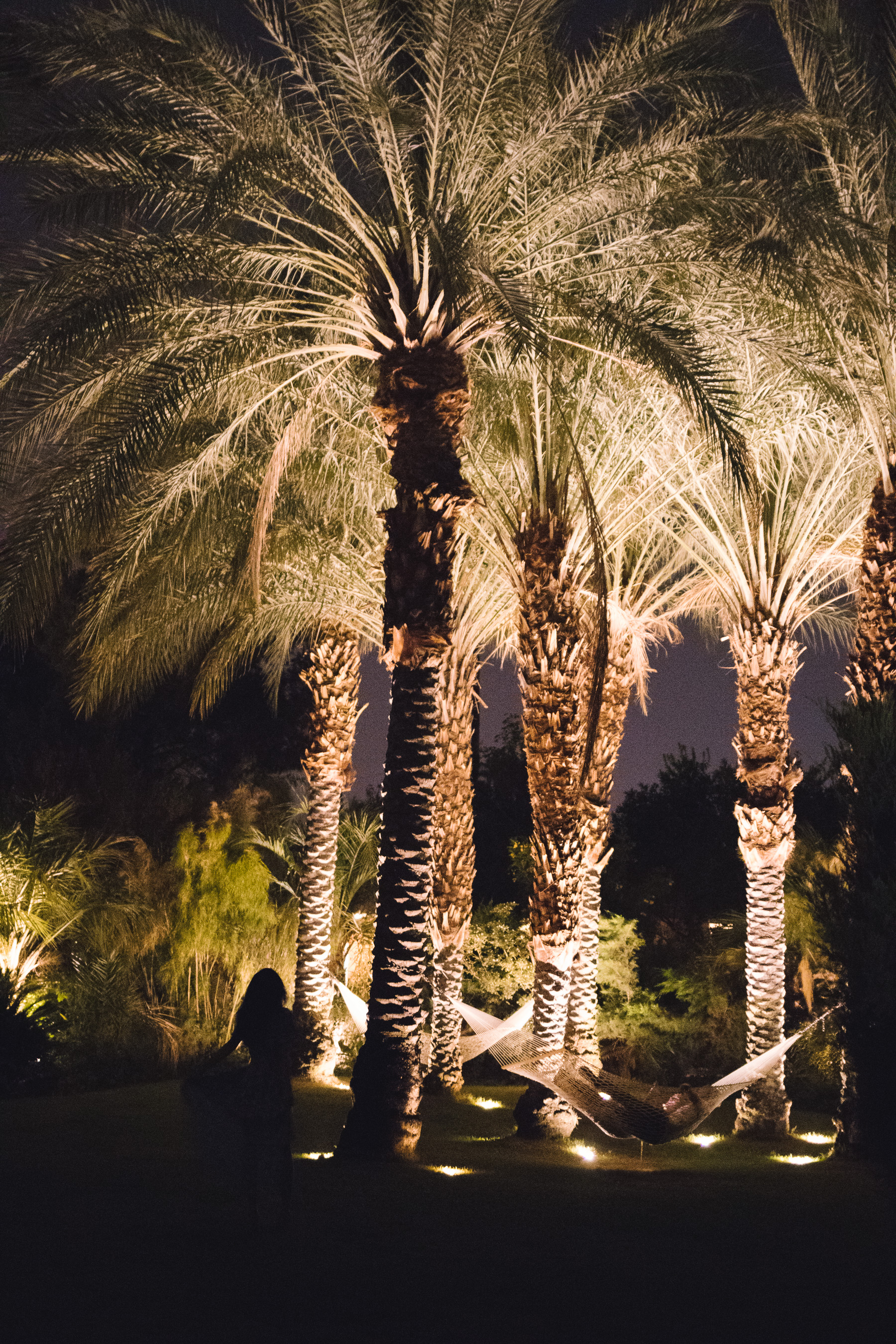 Champagne Twilight - Parker Palm Springs